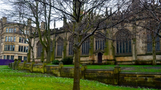 I love England because of the green grass and moss that covers the trees, making them look more vibrant and alive.