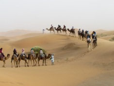 Our group from the university in the Sahara desert during a two-hour camel ride.