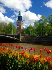 The view of the Turku Cathedral from the river.