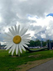 This giant replica of a daisy is one of many unique sculptures found around the city center.