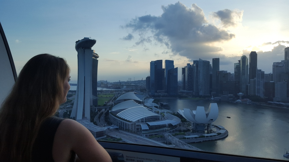 View from above in the Singapore Flyer.
