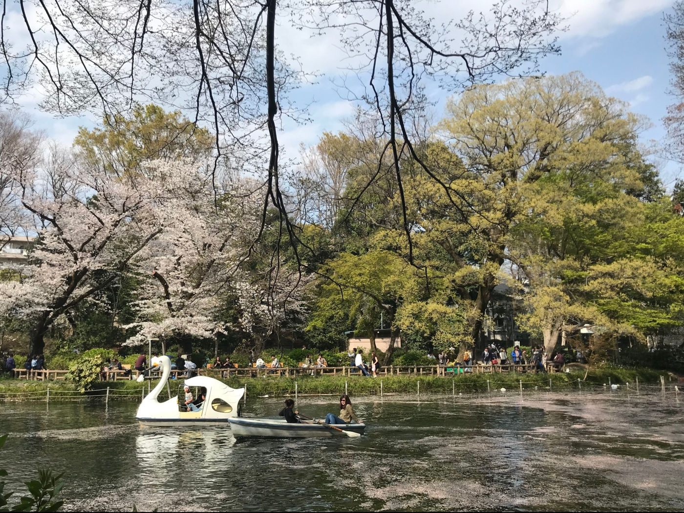 Boaters enjoy an outing on a lake in Japan.